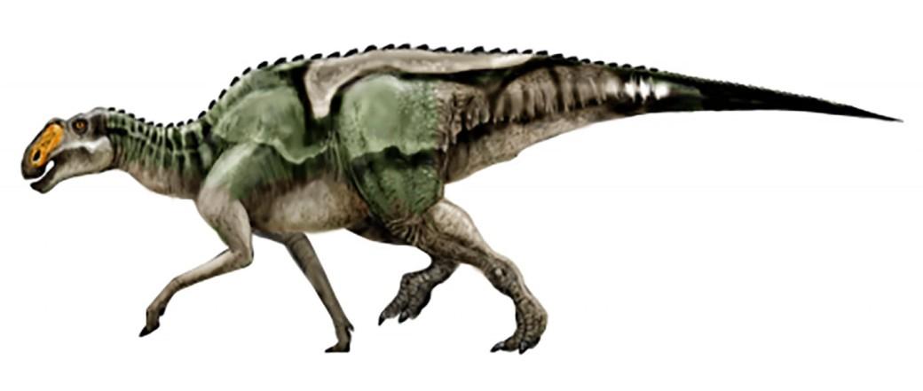 g1870_gryposaurus_2